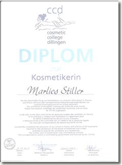 diplom_klein2